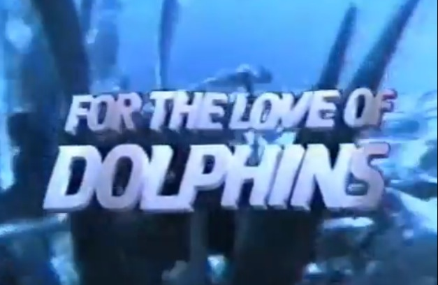 For the Love of Dolphins 1